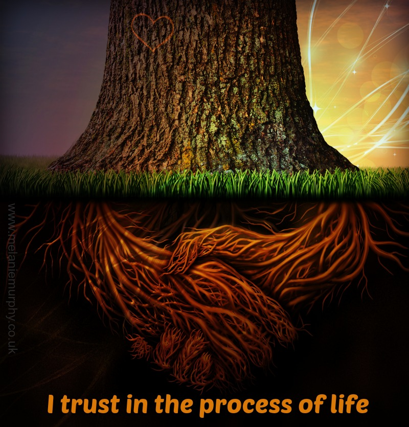 I trust in the process of life