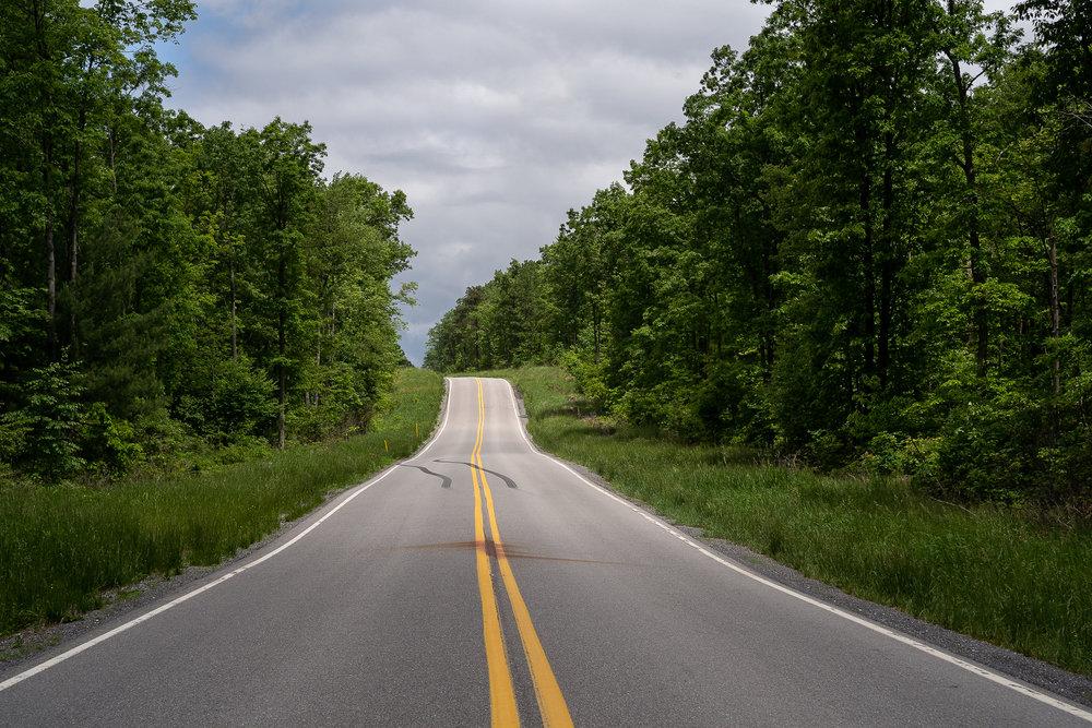 Road_Kill_For_Website_00003.jpg