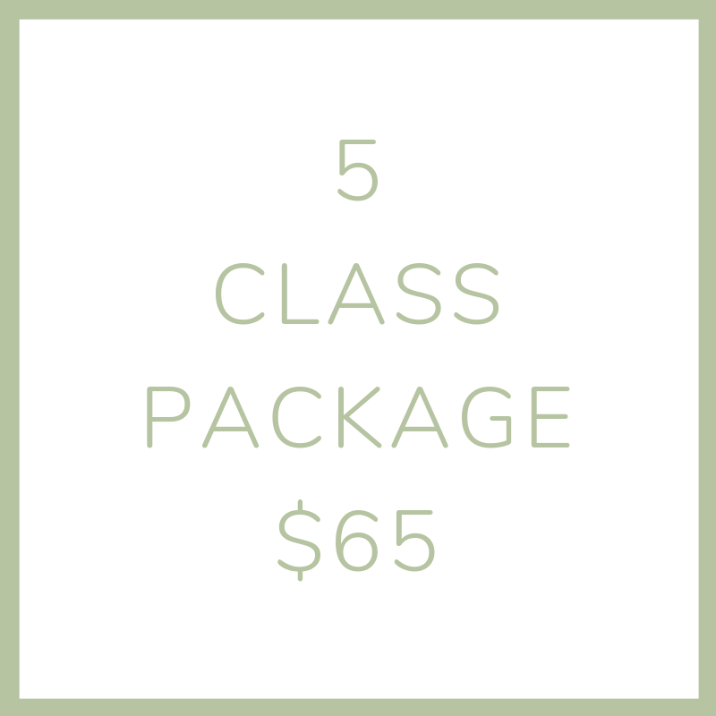 5 class package (2).png