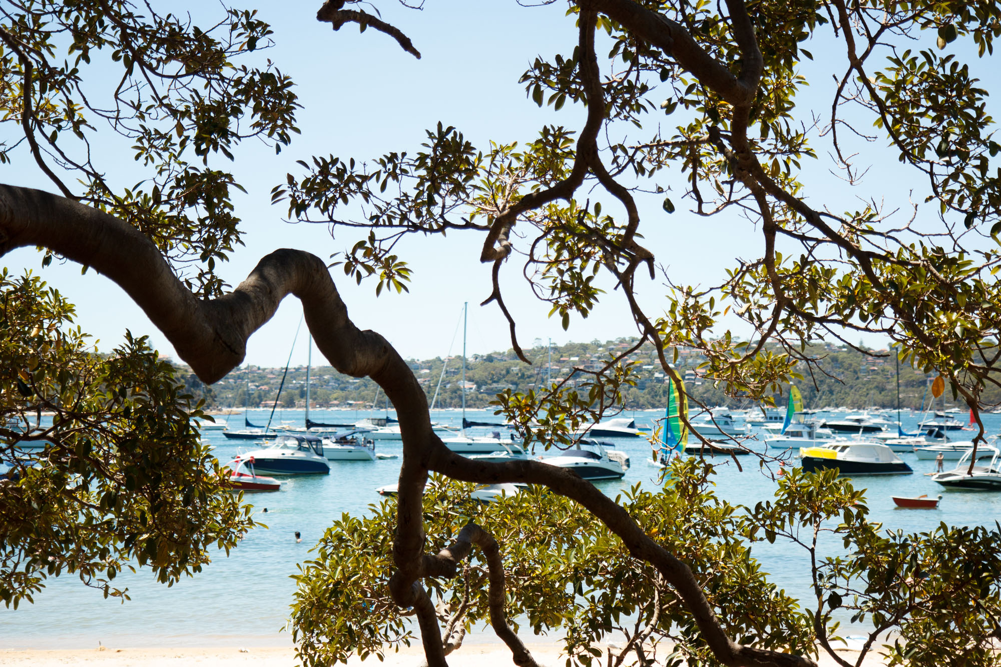 Boathouse Balmoral Beach | Balmoral Travel Guide | Sydney Travel Tips | Discover The Boathouse, a nautical lovers dream in Sydney, Australia.