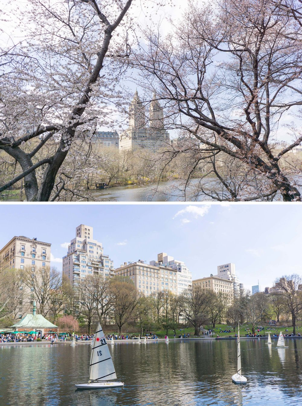 Central Park Travel Guide | New York | Your guide to Central Park in New York City. Filled with inspiring travel photography and tips.