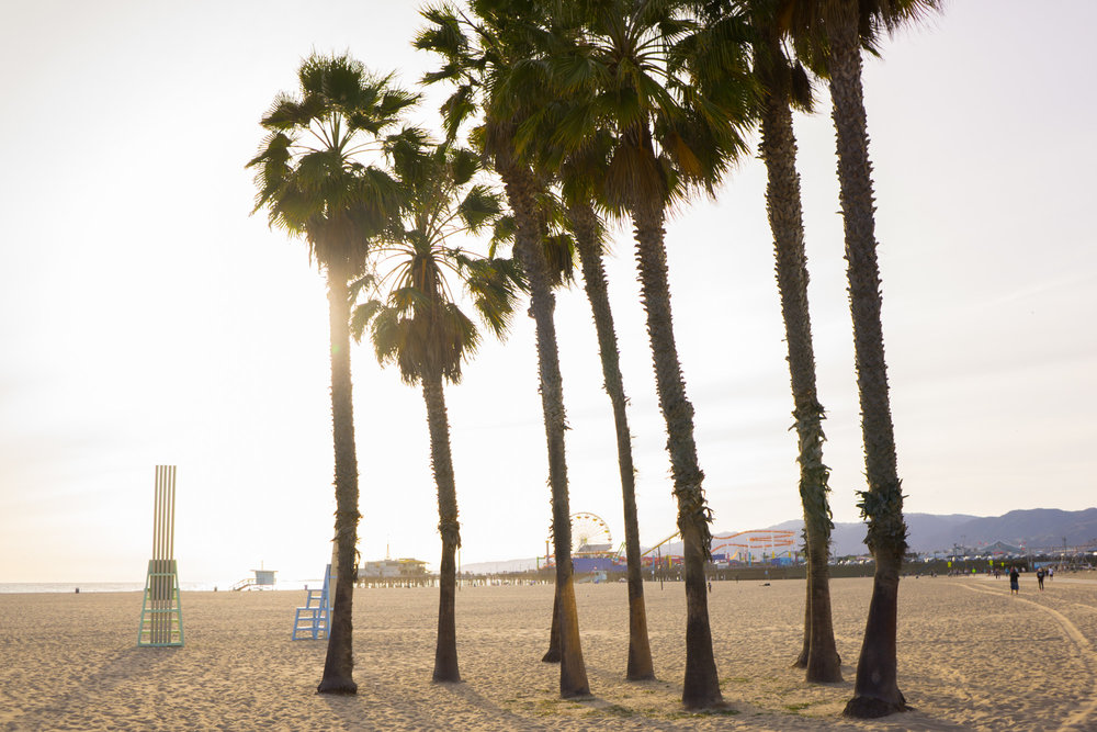 Los Angeles Travel Guide | California Travel Tips | Sharing where to visit and explore when in Los Angeles, the city of angels.
