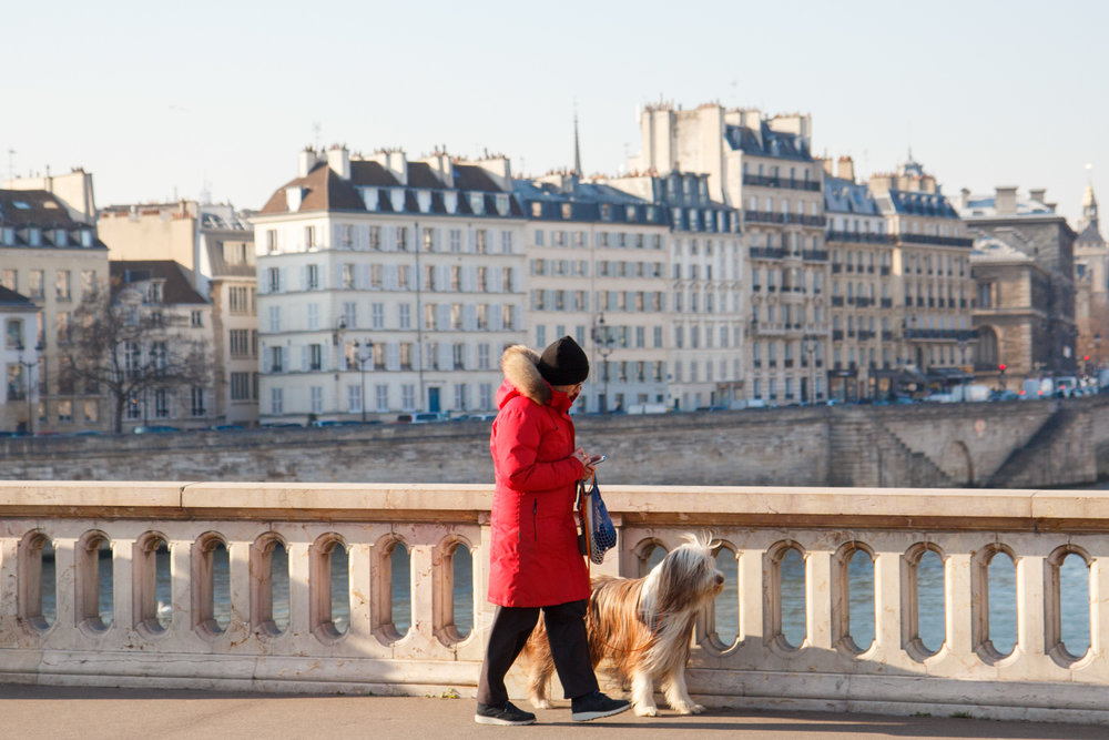 Discover the best things to see and do on a Sunday in Paris. | Sunday Paris Guide | Paris Travel Tips | Paris Photography