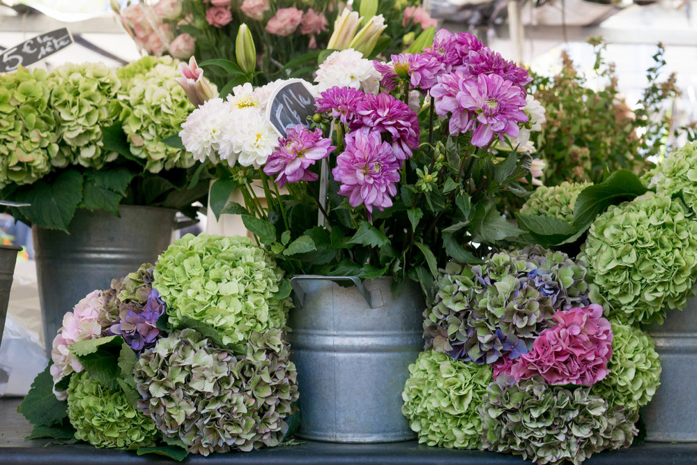 Paris Market Guide | Click through to discover the best Paris Markets to visit with this handy guide, filled with useful tips and wanderlust inducing imagery.