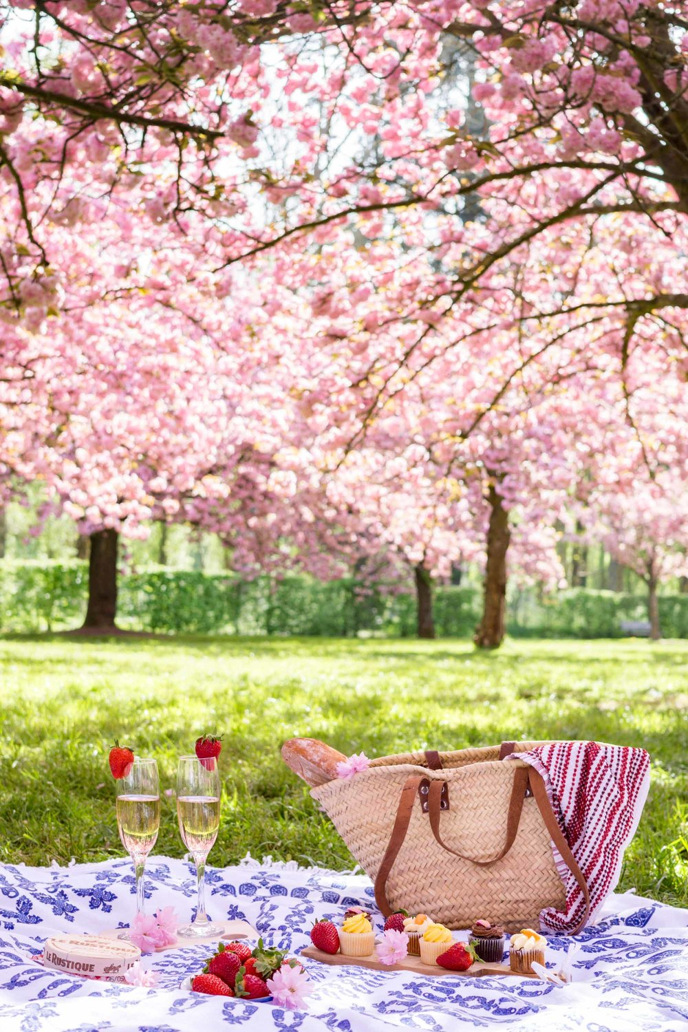 Parc de Sceaux | Paris Day Trip | Experience The Pink Orchard, a cherry blossom oasis within the Parc de Sceaux, with this floral filled travel guide.