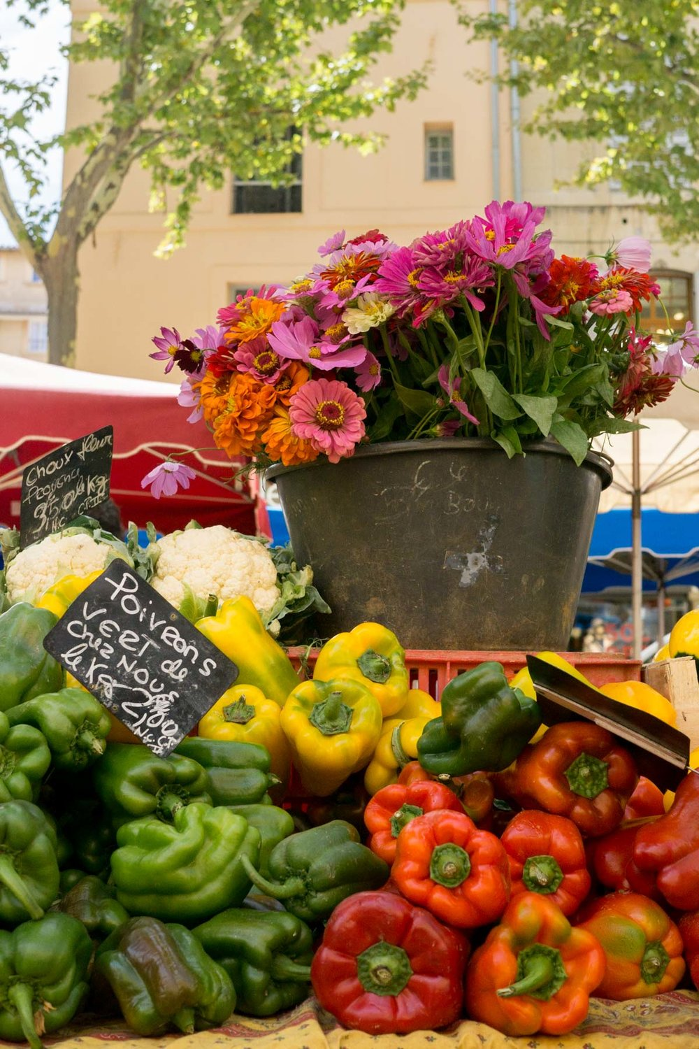 Discover the best markets to visit in Aix-en-Provence with this useful travel guide. | Aix en Provence Markets | France Travel Tips