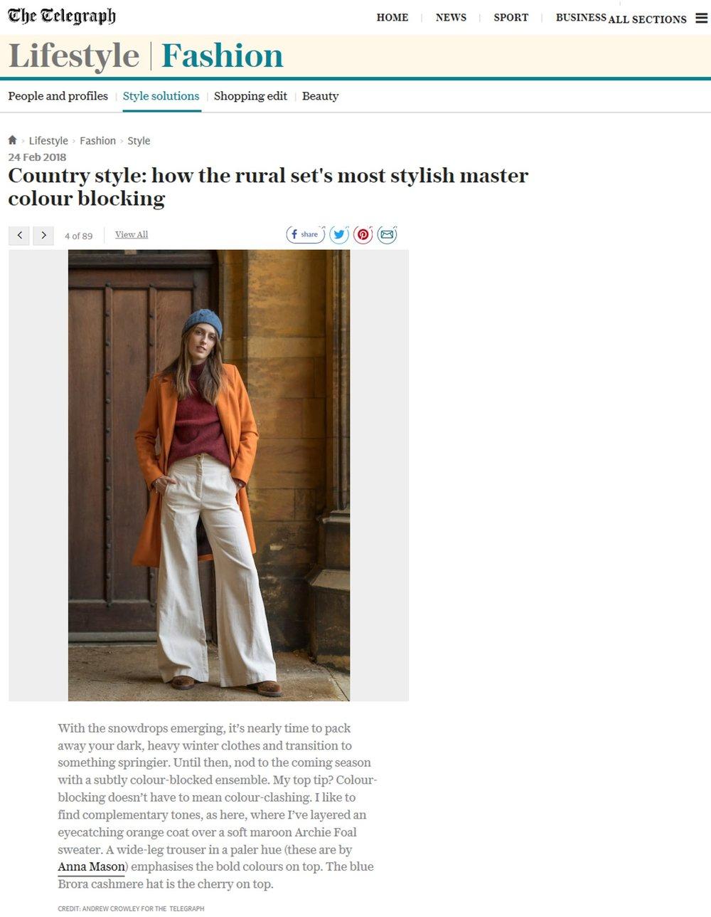 Telegraph Online, February 26th, Anna Mason.jpg