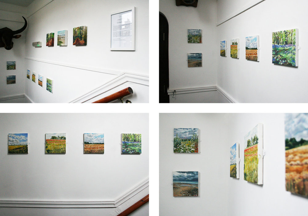 A SMALLER PICTURE: An Exhibition of Oil Paintings  by  Geraldine Waterman