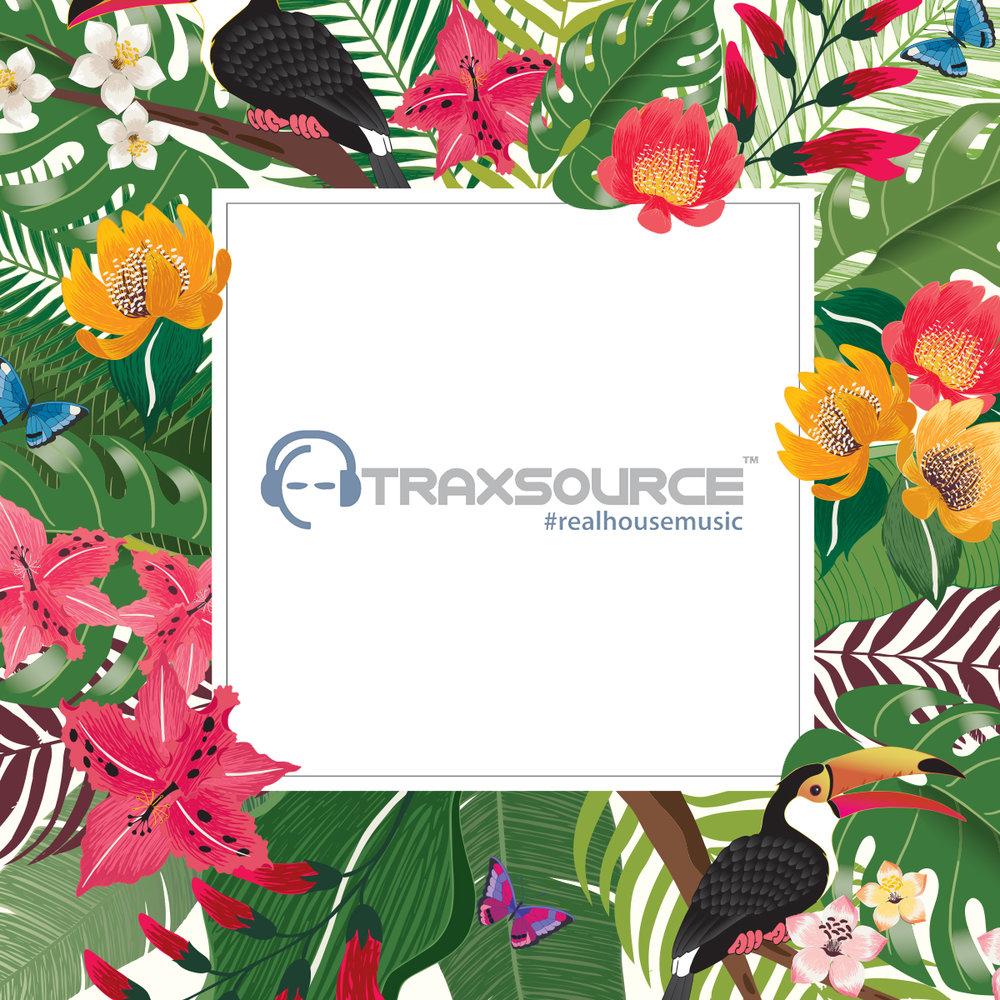 traxsourceweb.jpg