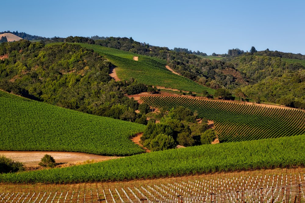 Napa and Sonoma Valleys, California, USA