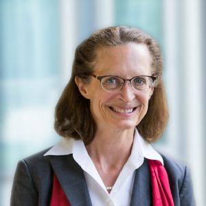 Deborah Thurston Node Lead, Design for Reuse & Disassembly
