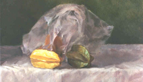 Janet Conlon Manyan, Untitled, (1992 Resident)