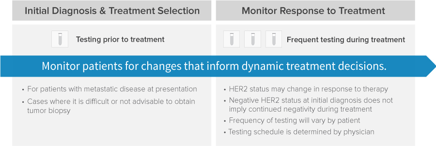 HER2 Testing Recommendations