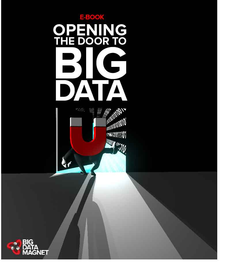 Opening the Door to Big Data E-Book Big Data Magnet.jpg