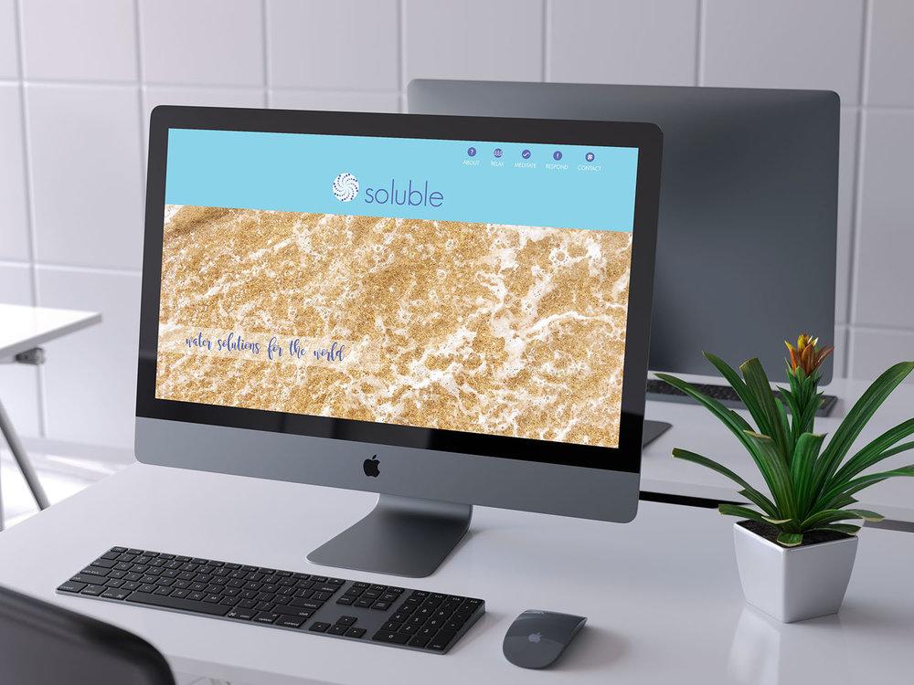 Soluble Website Mockup.jpg
