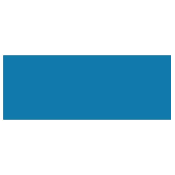 Asian Professional Exchange