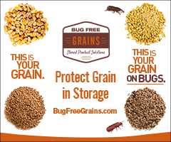 16-0402-BFG-Grain-on-Bugs-Storage_240x200_static.jpg