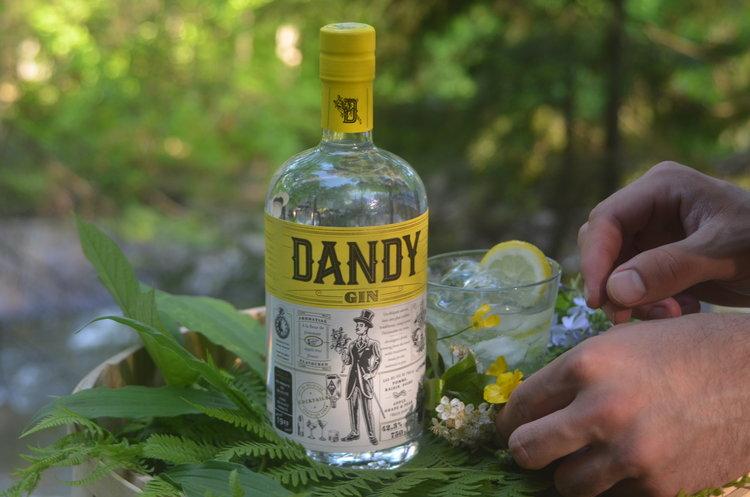 Dandy+Mains.jpeg