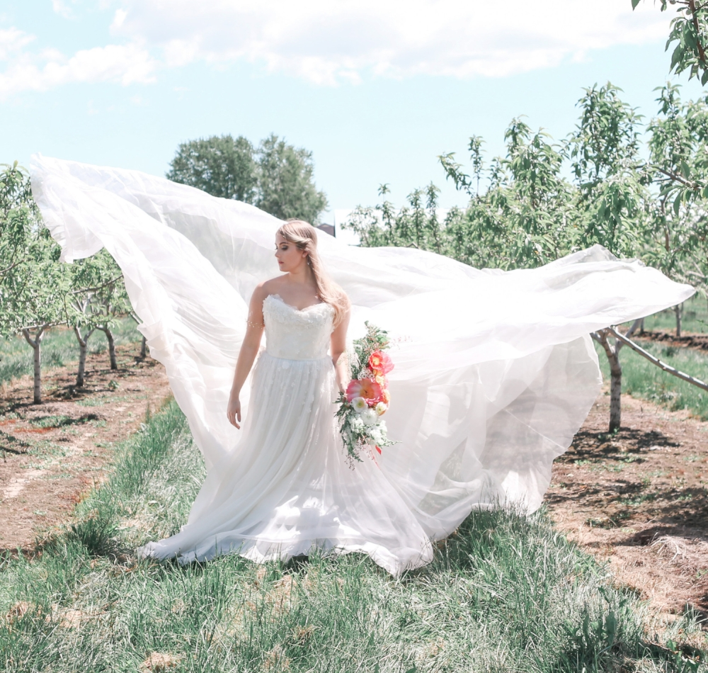 Cherry Lane Bride