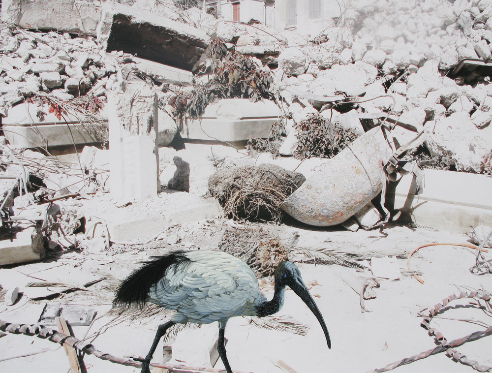 SPRINGTIME IN ALEXANDRIA III, 2011