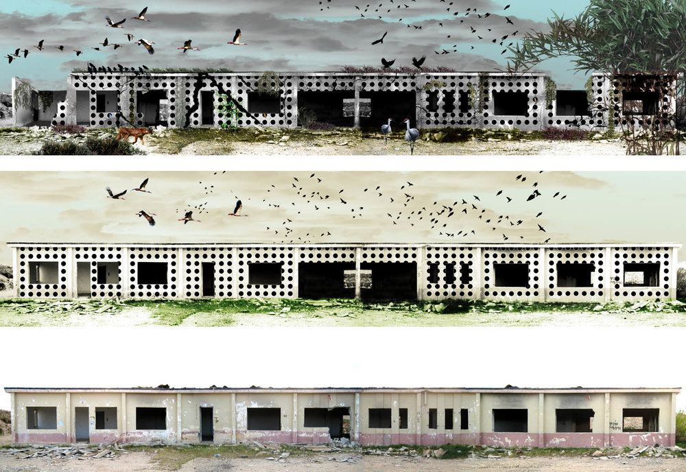 Decolonizing Art and Architecture, Project: Return to Nature: Façade I, II and III, 2007
