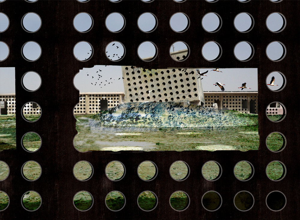Decolonizing Art and Architecture (DAAR), Project: Return to Nature: From the Holes