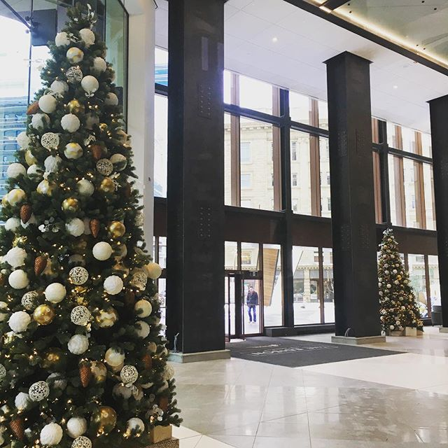 Happy Holidays! ✨2017 was a big year for The Edison. Thanks to everyone who was a part of it (construction team, tenants, staff, contractors) 🥂Looking forward to what 2018 brings!
