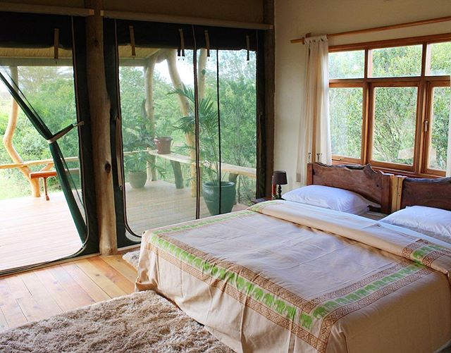 When you want to nap but you also want to enjoy the beautiful outdoors 🍃 Get the best of both worlds in our new single bedroom Safari Cottages 🐘 #wildluxury