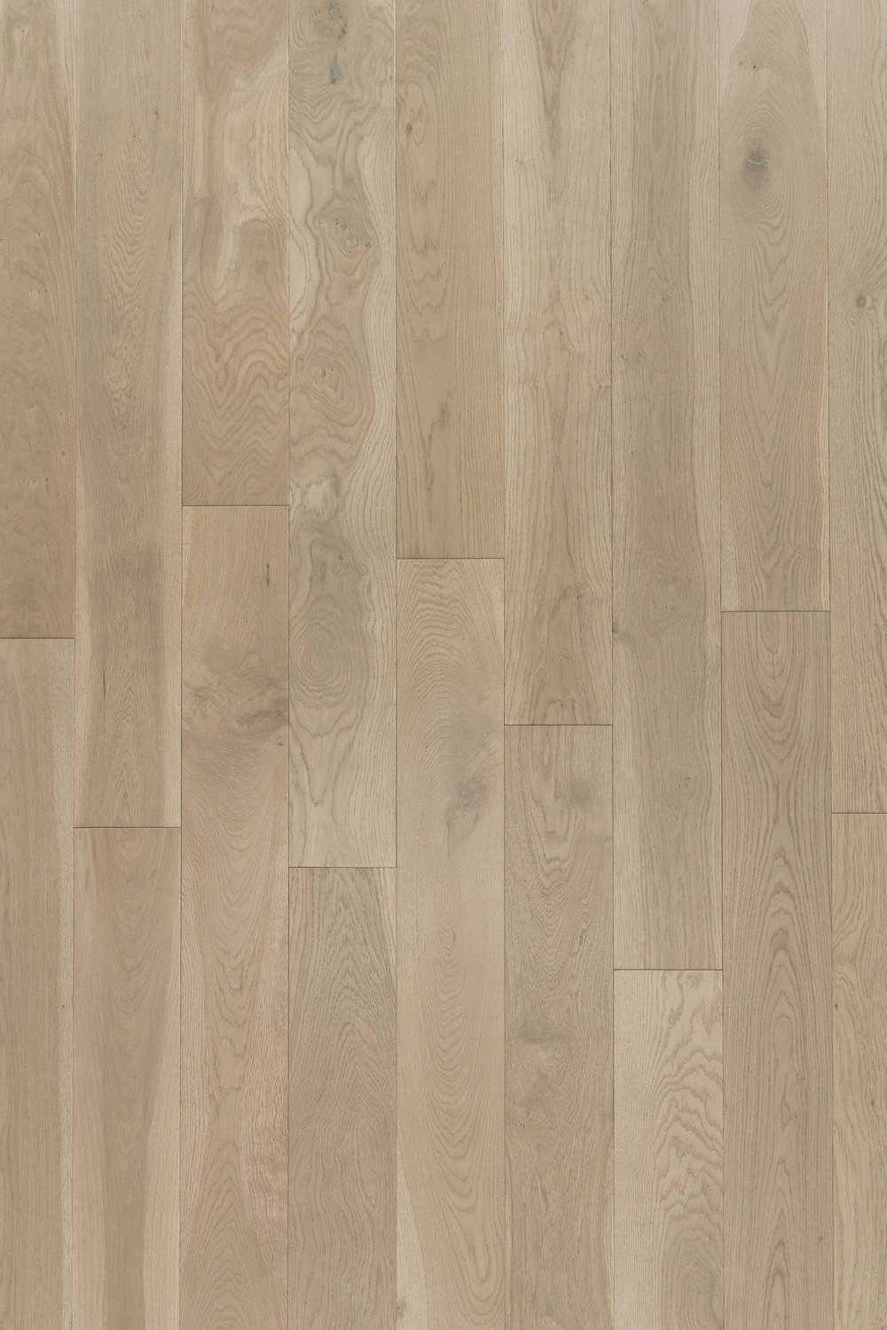 BSWO-22 | Gris Chaud | White Oak