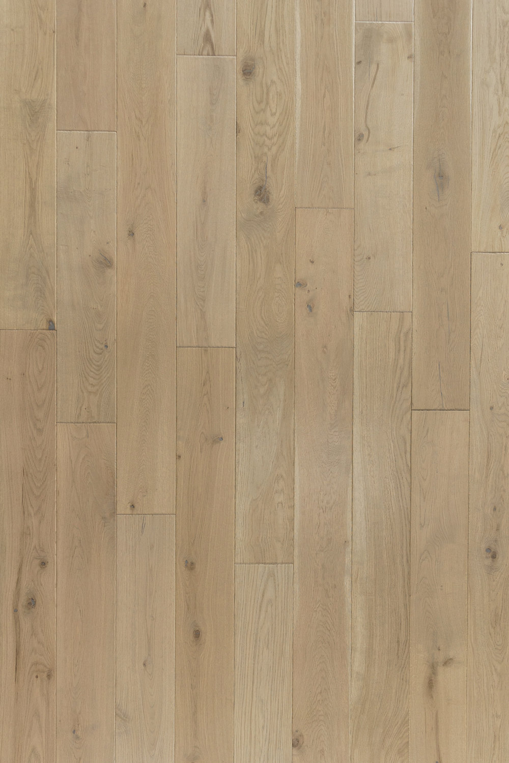 NVWO-22 | Gris Chaud | White Oak