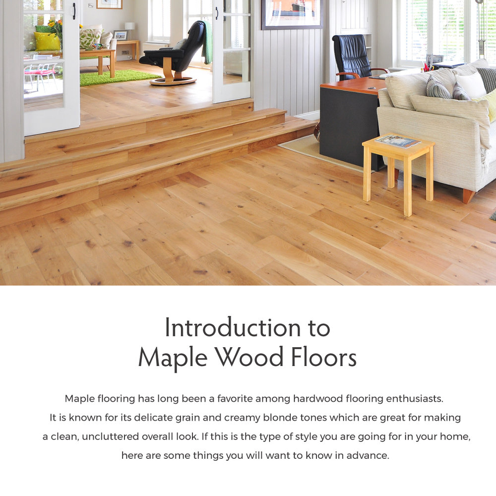 Introduction-to-Maple-Wood-Floors-.jpg