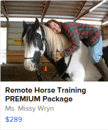 PREMIUM Remote Horse Training Package