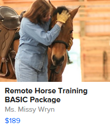 BASIC Remote Horse Training Package