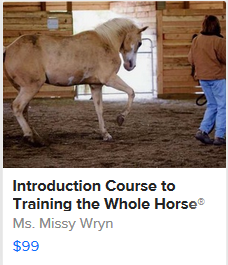 Introduction Course to Training the Whole Horse®