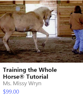 PNG Training Whole Horse.png