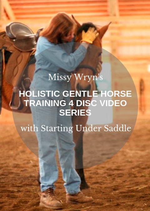 Holistic Horse.png