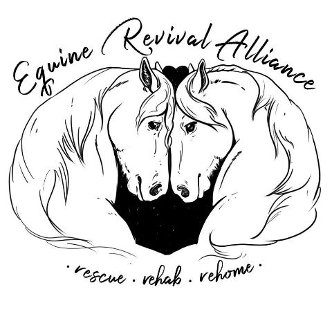 Equine Revival Alliance web.jpg