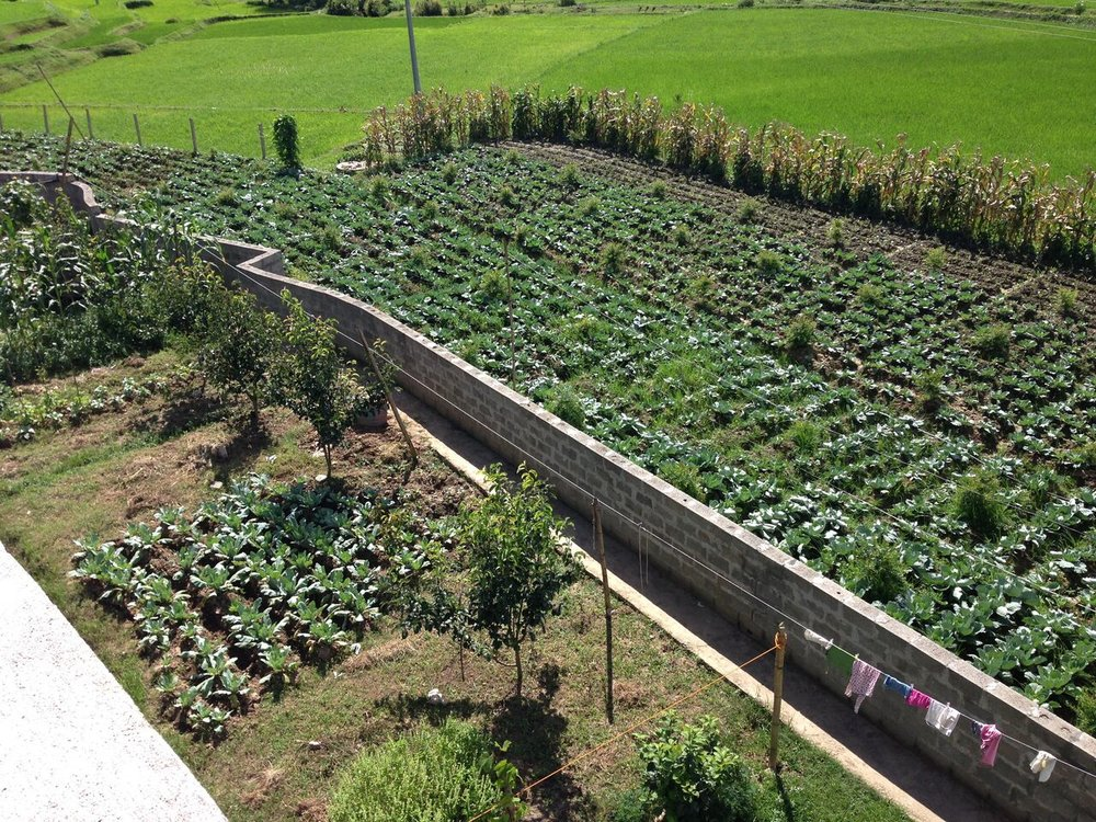 Mission Himalaya: Eco-Farm and Orphanage