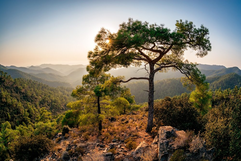 2. CTO - Troodos mountains.jpg