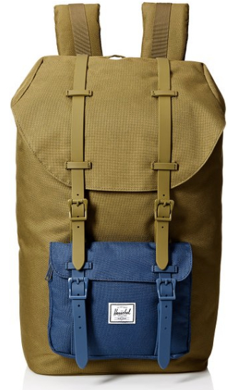 $85 - Herschel Supply Company Backpack