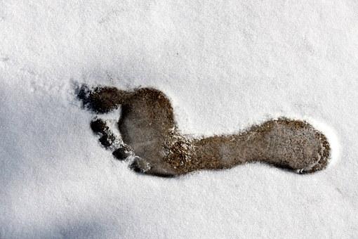 footprint-314743__340.jpg