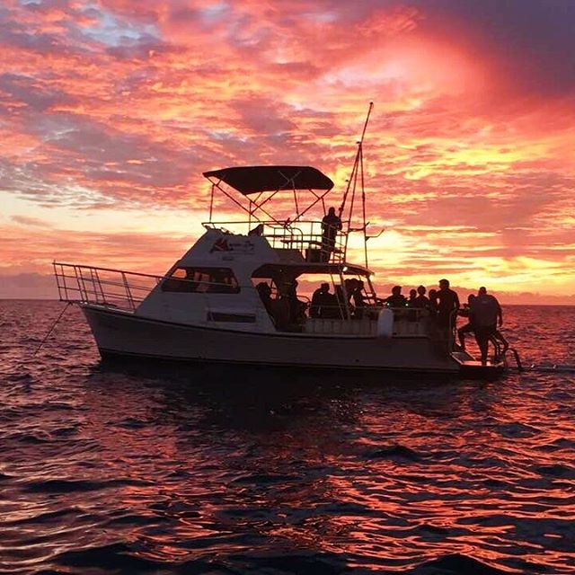 Incredible sunset before the Manta Ray NightEcoAdventure! 🙌🌞What a treat!  Ready to book your trip? 👉www.mantaraydiveshawaii.com👈