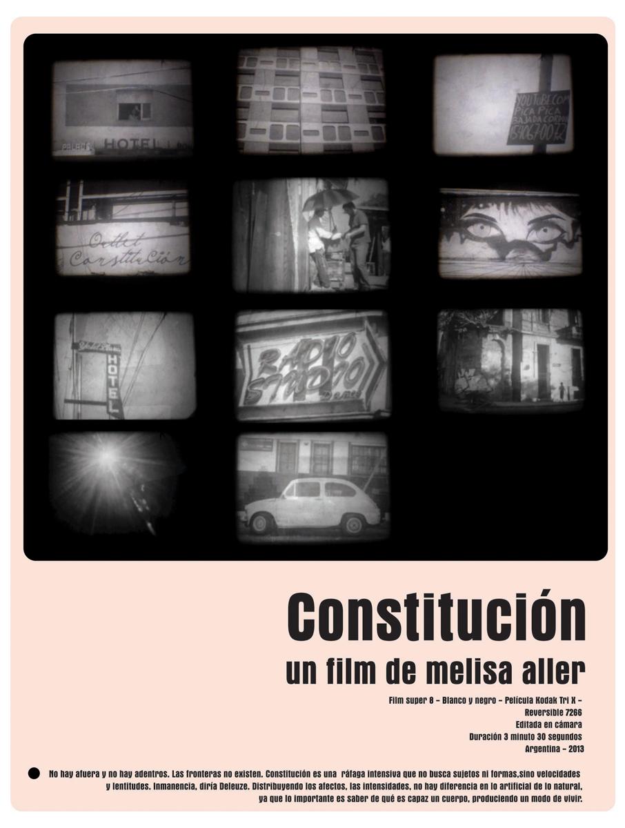Poster for  Constitución,  Melisa Aller, 2013.