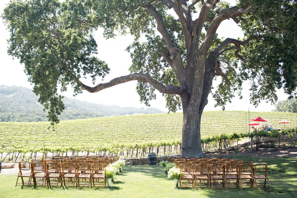 Hammersky Vineyards -