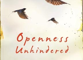 Openness Unhindered - Rosaria Champagne