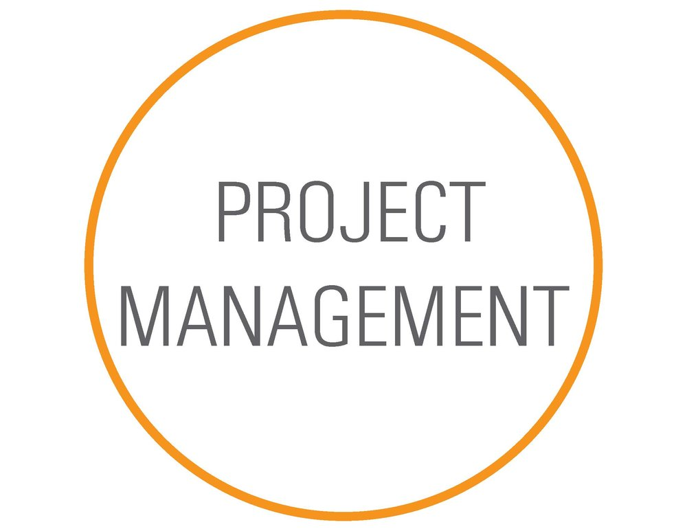 Copy of project management