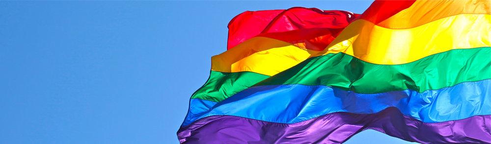 rainbow flag large.jpg