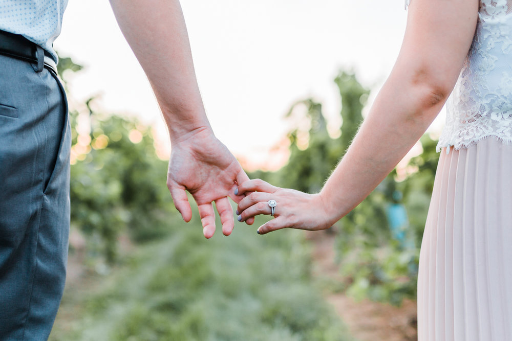 couple holding hands in vineyard - maryland and pennsylvania
