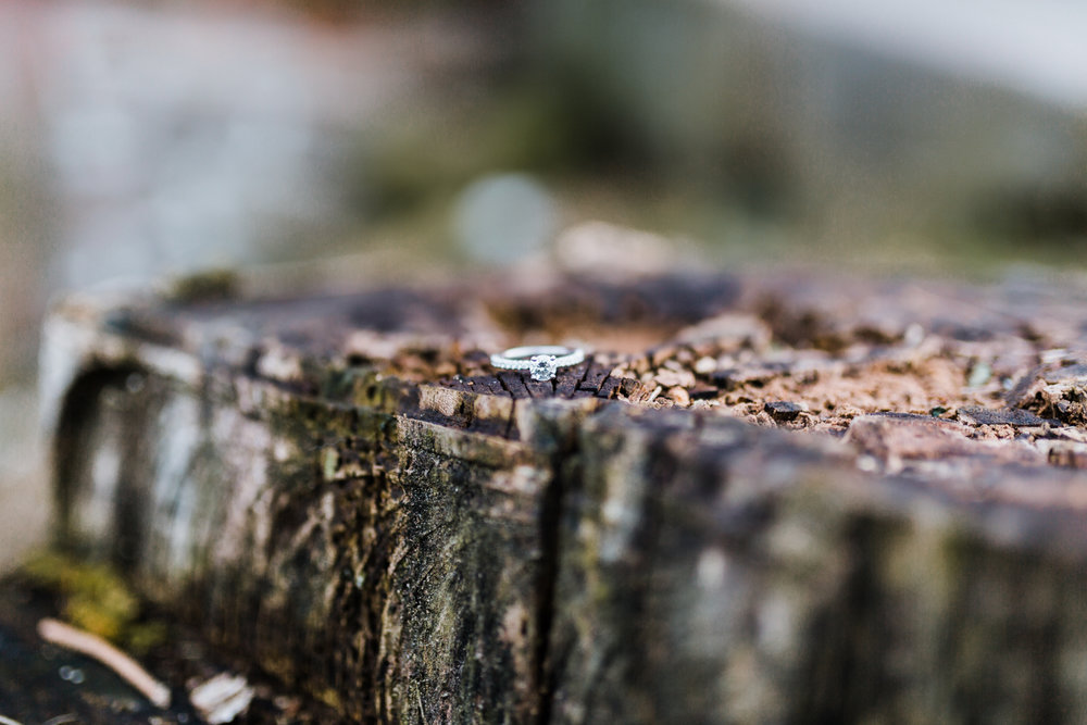 solitaire engagement session with side stones - white gold - tree stump macro