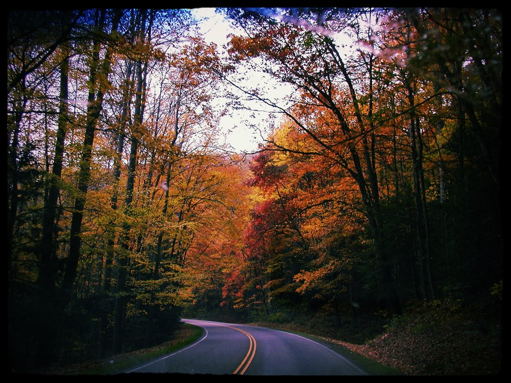 U.S. 441 is the main route through the Great Smoky Mountains National Park
